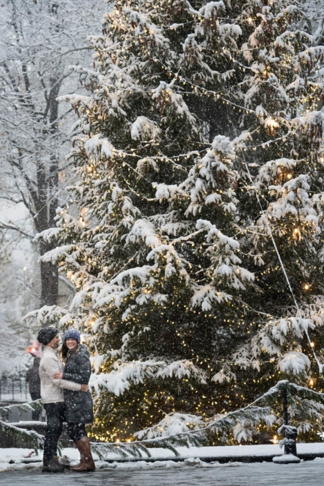 Engagement portrait by a large Christmas tree.