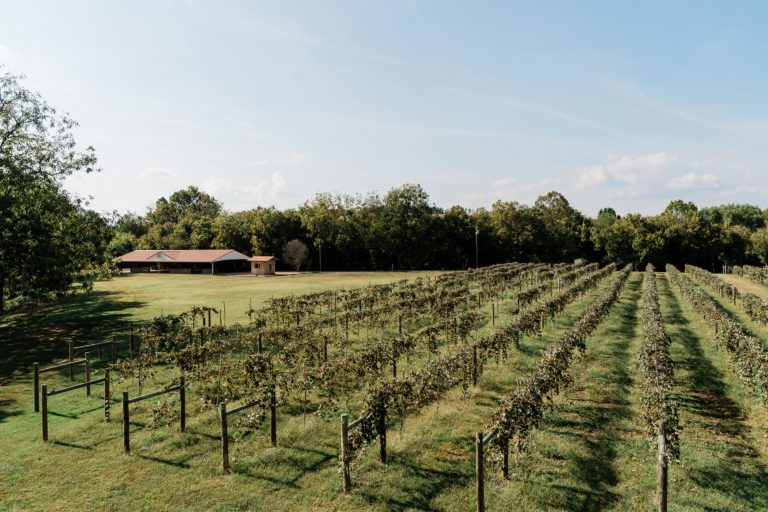 Nolichucky Vineyard Weddings